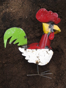 chicken in Paydirt